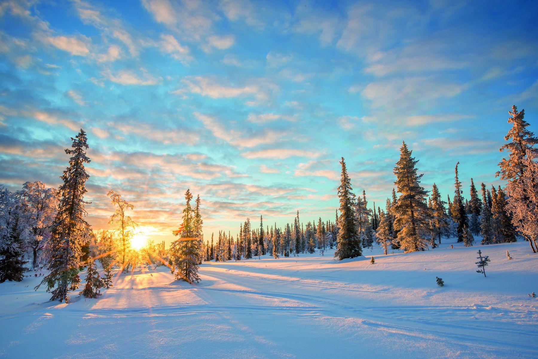 Saariselkae Lappland iStock854358142